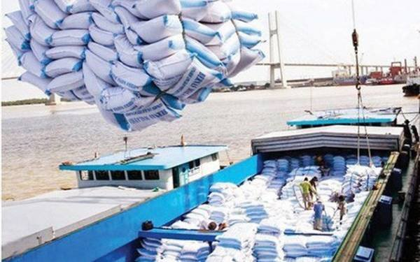 Vietnamese rice exports to China the largest volume in the past 5 years, particularly in the past 2 months