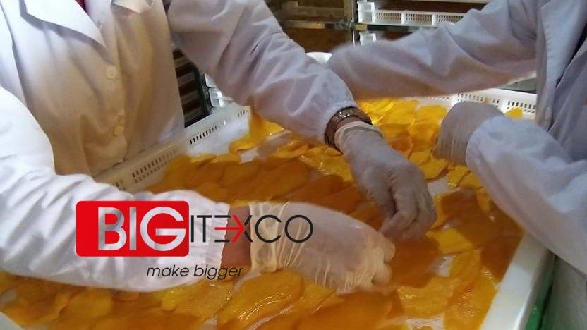 Bigitexco Mango Freeze Soft Dried Fruit 1 - Bigitexco Vietnam Cashew Nut - Pepper - Dried Fruit Company