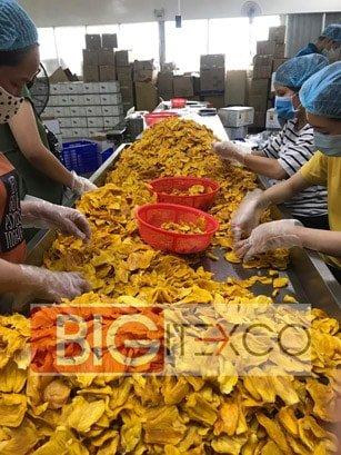 Organic Soft Dried Jackfruit Vietnam - Bigitexco Vietnam Cashew Nut - Pepper - Dried Fruit Company