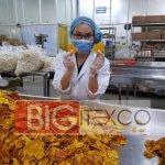 Vietnam Organic Soft Dried Jackfruit