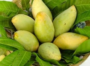 Vietnam wants to expand its mango product in 2021