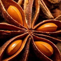 vietnam-star-anise-essential-oil
